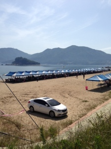 Shell Beach 1
