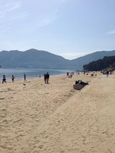 Shell Beach 2