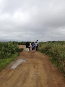 walking Russky Island